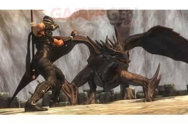 Ninja-Gaiden-Sigma-2_2009_06-26-09_03.jpg_610
