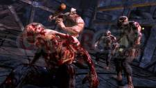 Splatterhouse_2010_03-25-10_07