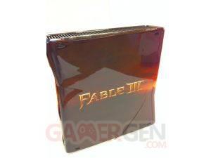 Xbox360-Fable III 04
