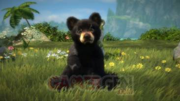 Kinectimals now with bears  (9)