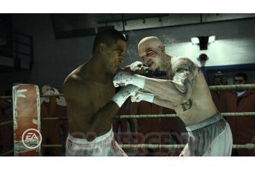 Fight-Night-Campion_15012011 (3)