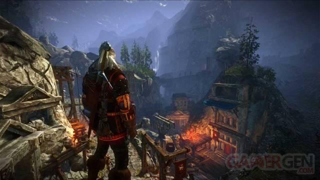 The Witcher 2 Assassins of Kings screenshot 27-01-2012 (10)
