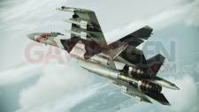 ace combat assault horizon 6
