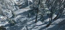 Assassin's Creed III chasse (7)