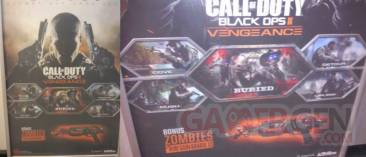 Call of Duty black ops II vengeance dlc