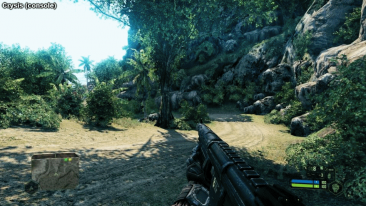 crysis Capture