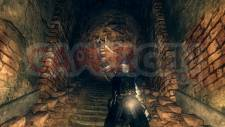 dark-souls-screenshot-11052011-12