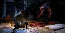 dragon-dogma-dark-arisen-image-002-31012013