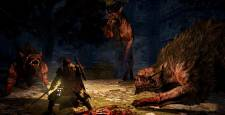 dragon-dogma-dark-arisen-image-005-31012013