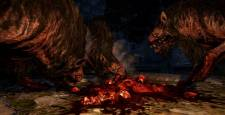 dragon-dogma-dark-arisen-image-008-31012013