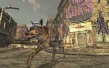 Fallout-New-Vegas_12