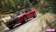 forza-horizon-dlc-rally-screenshot-002-18-12-12