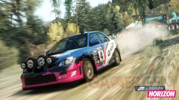 forza-horizon-dlc-rally-screenshot-010-18-12-12