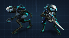 halo-4-jackal-ranger