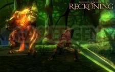 Kingdoms-of-Amalur-Reckoning_12