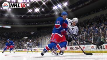 NHL 14 colision