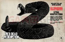 Red-Dead-Redemption_chasse-17