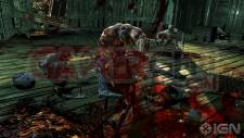 Splatterhouse namco Bandai images screenshots PS3 Xbox 360 (6)