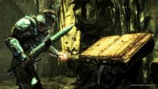 the-elder-scrolls-v-skyrim-dragonborn-screenshot-15-11-2012-002