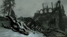 the-elder-scrolls-v-skyrim-dragonborn-screenshot-15-11-2012-005