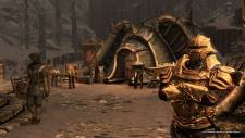 the-elder-scrolls-v-skyrim-dragonborn-screenshot-15-11-2012-009