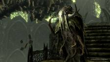 the-elder-scrolls-v-skyrim-dragonborn-screenshot-15-11-2012-011