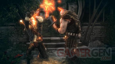 The Witcher 2 (4)