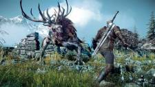 the-witcher-3-wild-hunt-image-001-06062013