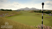 Tiger Woods PGA Tour 13 (3)