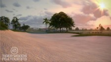 Tiger Woods PGA Tour 13 (6)