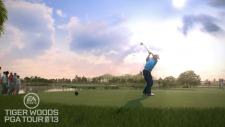 Tiger Woods PGA Tour 13 (9)